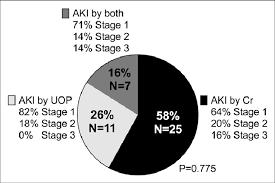 Kidney Creatinine Chart Pie Chart Showing Distribution Of Acute Kidney Injury Aki