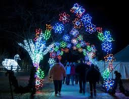 Wild Lights Detroit Zoo Tickets Final Days Of Wild Lights At The Detroit Zoo Royal Oak Mi