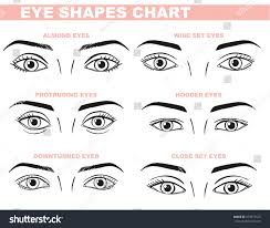 eyes face chart blank template makeup stock vector hd royalty free