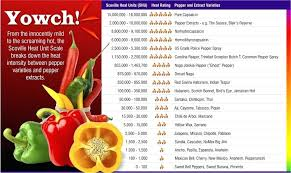 Pepper Scoville Scale Chart Secrets Of The Use Of Peppers Steemkr
