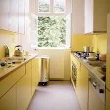 Long Narrow Kitchen Amazing Narrow Kitchen Ideas Best Of Kitchen Design Long Narrow