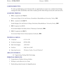 Resume Templates Google Docs Free Google Resume Examples Sample Template Objective Pdf Photos HQ 100