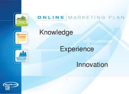 Real Estate Marketing Plan Delectable Online Real Estate Marketing Plan