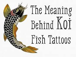 Koi Fish Tattoos Meaning Color Direction And More Tatring