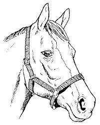engraving pattern horse head