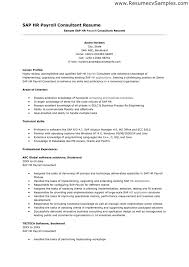... Sample Sap Resume 4 SAP HR Payroll Consultant Will Give Ideas And  Provide As References Your ...