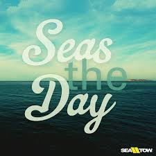 Boat Quotes Delectable Seas The Day Boatquote Boat Quote Seatow Sea Tow Nautical