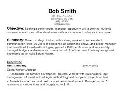 Resume Objective Statements Samples Examples Strong Objective