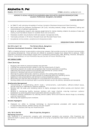 Business Resume Examples 2015