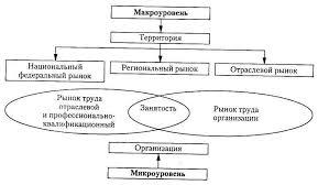Вторичный рынок труда УПРАВЛЕНИЕ ПЕРСОНАЛОМ ОРГАНИЗАЦИИ  Взаимосвязь таких рынков труда представлена на рис 2 1