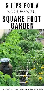 successful square foot garden