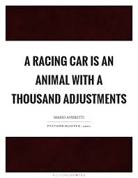 Race Car Quotes Cool A Racing Car Is An Animal With A Thousand Adjustments Picture Quotes