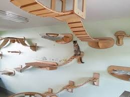Para Gatos Overheadcatplaygroundroomgoldtatze1 Bored Panda Rooms Transformed Into Overhead Cat Playgrounds With Walkways And