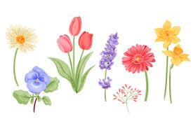 free vector watercolor spring flowers