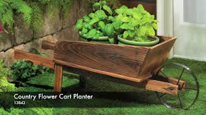 13843 country flower cart planter you