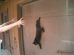 the garage doorMy cat got stuck in the garage door for about an hour until we