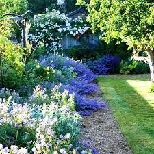 country garden plants french country garden design ideas french country garden decor country garden plants corfe