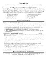 Bank Resume Template Banking Resume Format Bank Manager Resume
