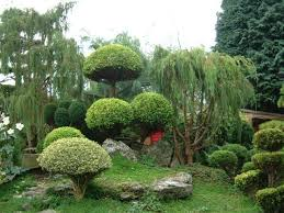 Small Picture 12 best zen gardens images on Pinterest Zen gardens Garden