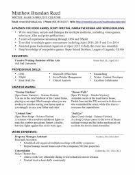Medical Writer Resume Example Best Of Technical Writer Resume Entry