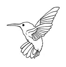 Small Picture Get This Printable Hummingbird Coloring Pages Online 89391