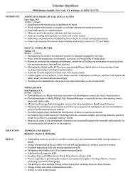 Media Buyer Resume Samples Velvet Jobs