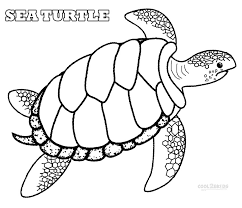 Small Picture Print Sea Turtle Coloring Pages Fresh At Set Free Coloring Kids