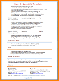 sale assistant resume.Preview-of-Sales-Assistant-CV-2.png