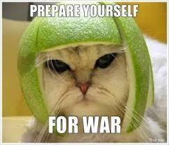 prepare-yourself-for-war-thumb.jpg via Relatably.com
