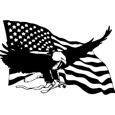 bald eagle american flag wall car truck laptop window vinyl sticker decal