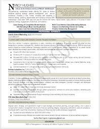 Businessn Resume Example New College Examples Continuity For