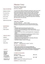 Resume Examples Job Descriptions Job Resume Examples Job