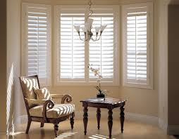 Living Room Blinds And Curtains Living Room Wonderful Living Room Windows Treatments Ideas With
