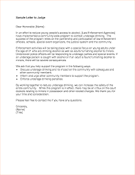 7 sample character letter to judge academic resume template regarding sample character letter for court sample academic resume