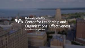 Ub Organizational Chart Center For Leadership And Organizational Effectiveness