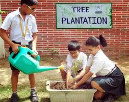 short essay on tree plantation