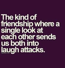 Best Friendship Quotes Delectable 48 Dumbass Best Friends Quotes With Pictures