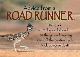 Roadrunner Meaning and Messages – KML ...