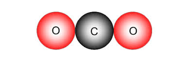 carbon dioxide units conn one carbon atom and two oxygen atoms