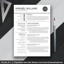 Professional Resume Template Word Resume Simple Cv Template