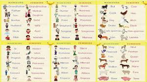 Gender Of Nouns Useful Masculine And Feminine List 7 E S L