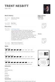 Delivery Driver Resume Samples Visualcv Resume Samples Database