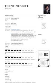 delivery driver resume samples   visualcv resume samples databasedelivery driver resume samples