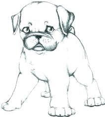 Cute Dog Coloring Pages Dog Coloring Pages Printable Puppy Dog