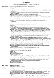 Enterprise Consultant Resume Samples Velvet Jobs