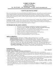 Programmer Resume Sample Programmer Resume Sample Complete Guide 100 Examples Senior 78