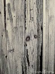 knot holes old wooden fence slats 16349099jpg 1300957 Wood
