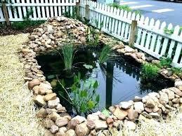 build koi ponds building a pond backyard pond ideas pond best building a pond ideas on build koi ponds