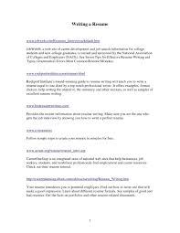 Resume Summary Statement New Resume Professional Summary