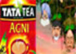 How To Make Ballots On Microsoft Word Blending Tea Leaves With Ballots The Economic Times